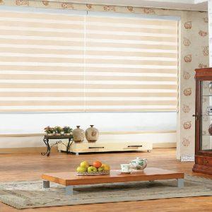 Luxdezine Window Blinds Combi Shades Combi Basic
