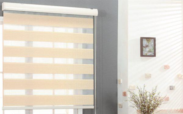 Luxdezine Window Blinds Combi Shades Twins Metal