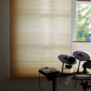 Luxdezine Window Blinds Honeycomb Blackout Nice