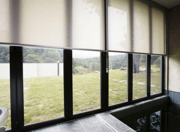 Luxdezine Window Blinds Roll Screen Indoor Pool Modern Side