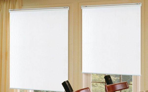 Luxdezine Window Blinds Roll Screen Single Black Out
