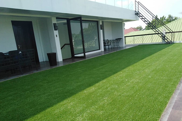 Artificial Turf Lawn